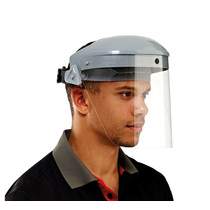 Keep Safe Spare Faceshield Visor